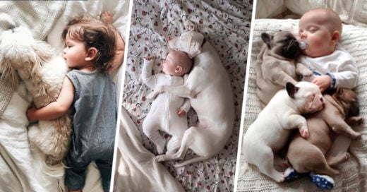 COVER 25 Fotos de perros durmiendo con pequeños humanos que te tocarán el corazón