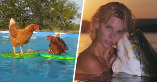 Cover-Funny-Swimming-Pool-Photos