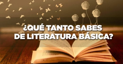 Cover-literatura
