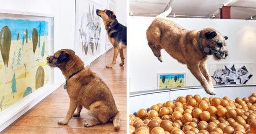 Cover-perros-arte