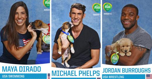 Cover-perros-olimpicos