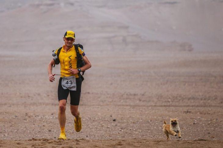 Cachorrita y maratonista corriendo en el desierto