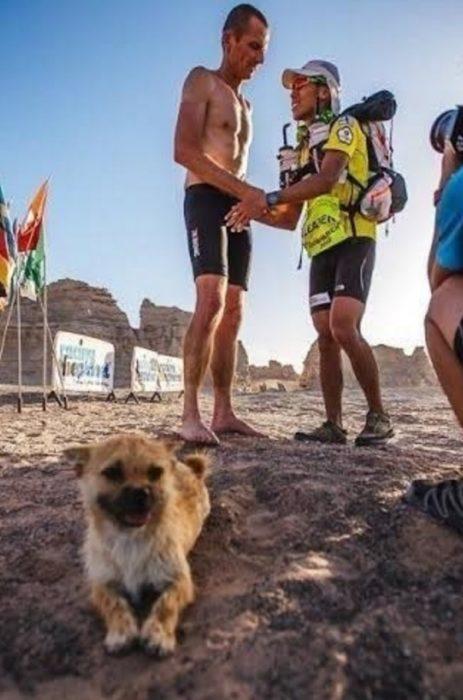 Al fondo se ven dos maratonistas saludandose y al frente se ve la cachrrita acostada