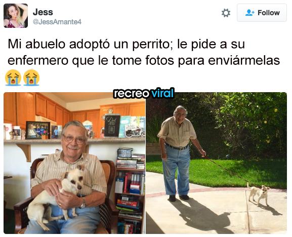 Abuelo toma fotos con su perro para mandárselo a la nieta