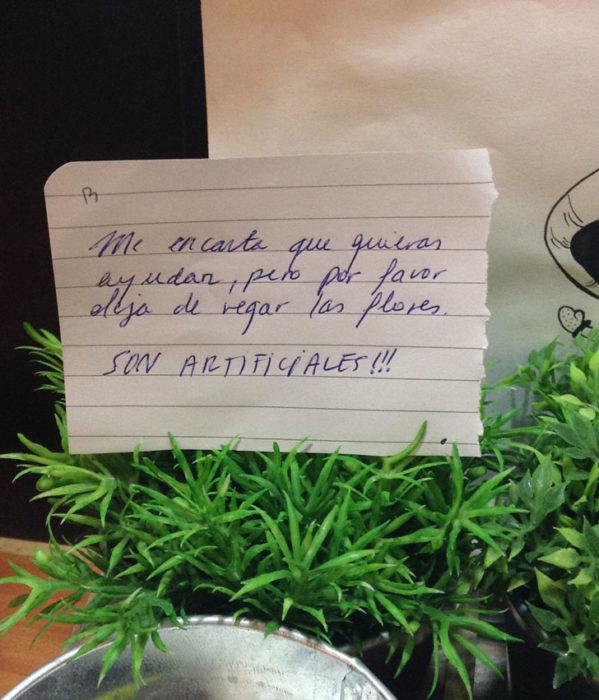 PLANTAS ARTIFICIALES QUE ESTÁN SIENDO REGADAS