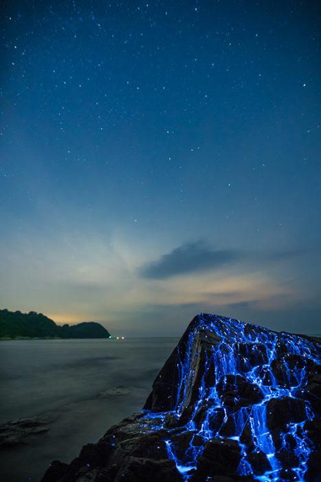 Paisaje de una roca en la que chorrea luz bioluminiscente originada por las luciérnagas del mar