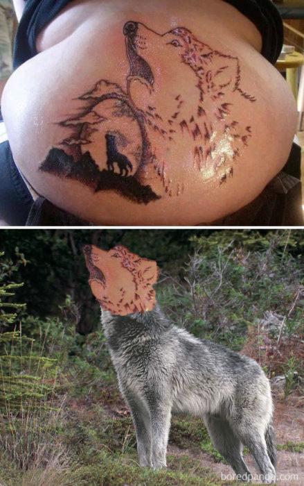 lobo tatu