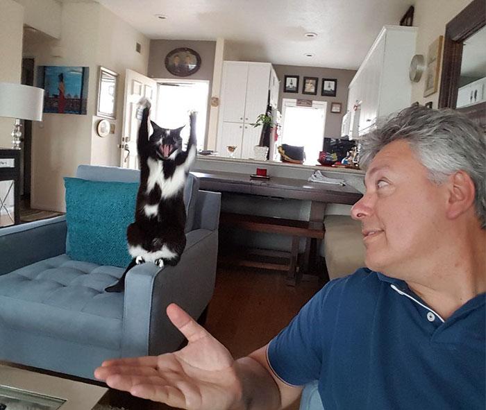 gato y dueño