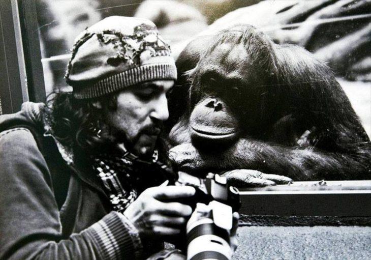 fotógrafo mostrando fotografía a un primate