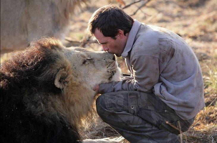 kevin richardson besando a un león