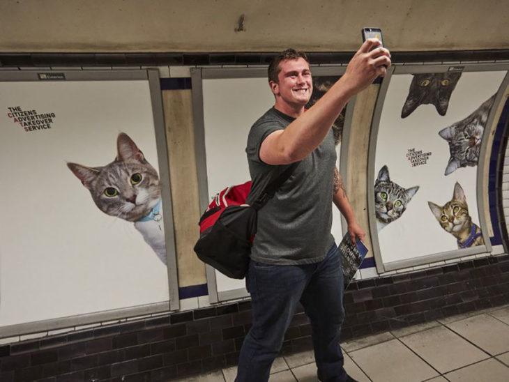 señor tomándose foto frente a pared con fotos de gatos