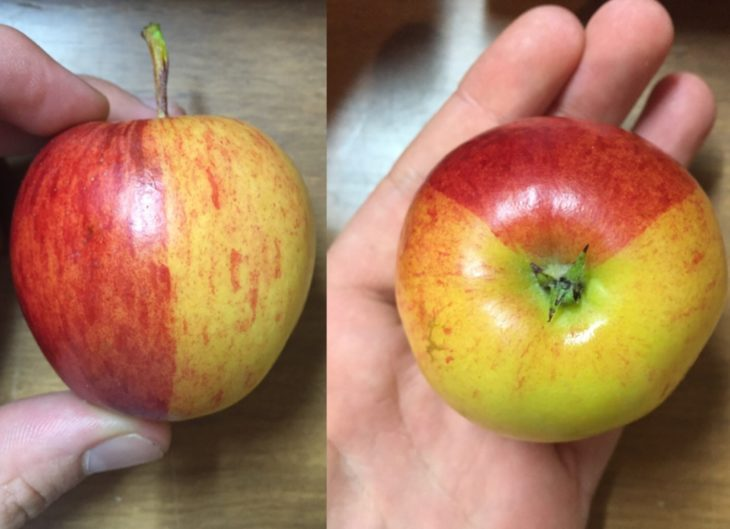 manzana de colores
