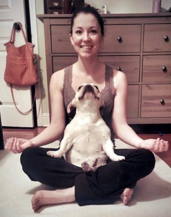 perrito relajándose con su dueña