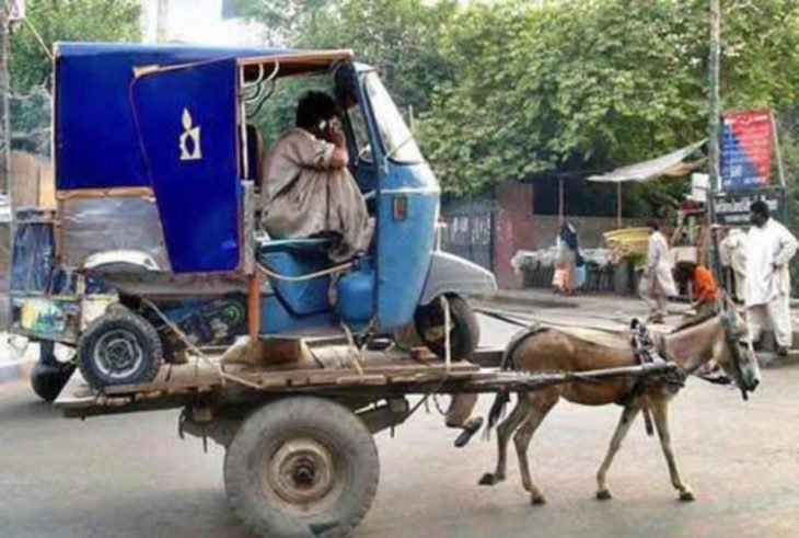 burro cargando un carro