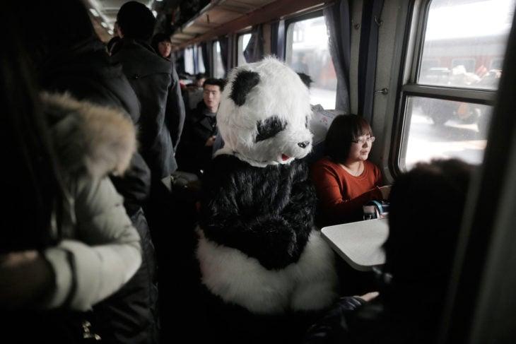 mujer disfrazada de panda en el autobús