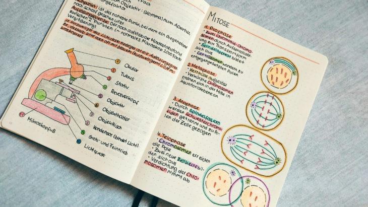 tarea con dibujos y diagramas
