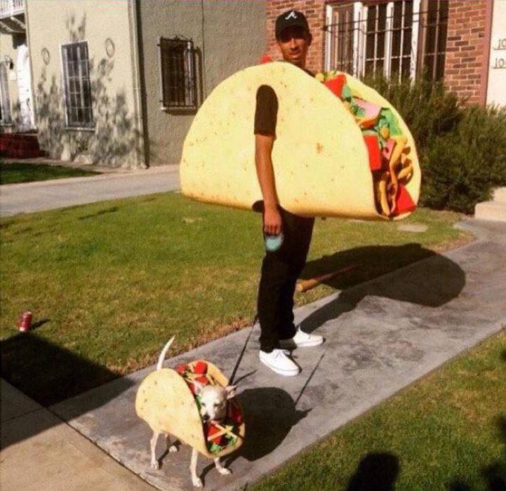 humano y perro disfrazados de taco