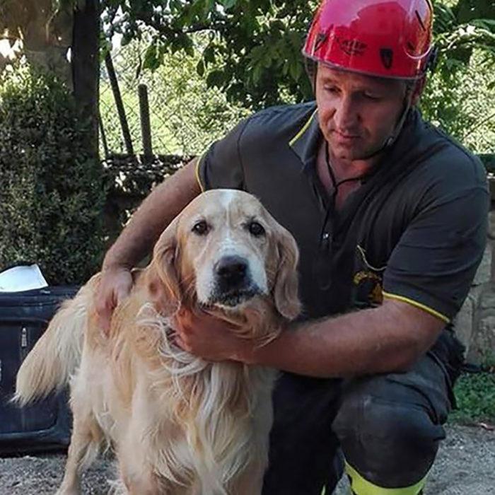 perro con bombero