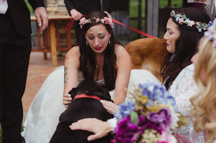 novia llorando frente a su perro