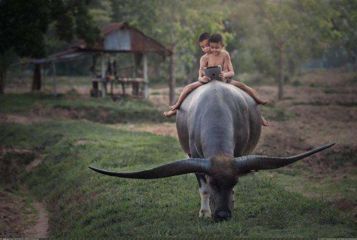 niños con tablet montados en animal