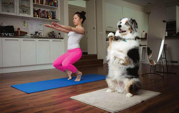 perrito con mujer haciendo yoga