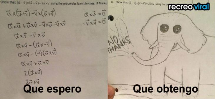 expectativa vs realidad examen