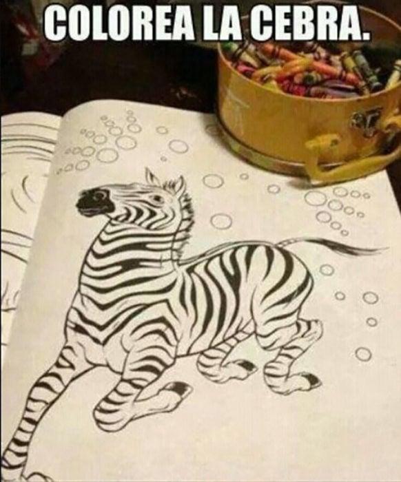 hoja de colorear de una zebra