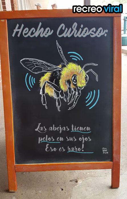 cartel sobre abejas
