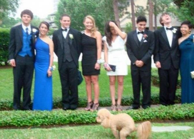 Animales photobomb - perro haciendo popo en la foto de graduación