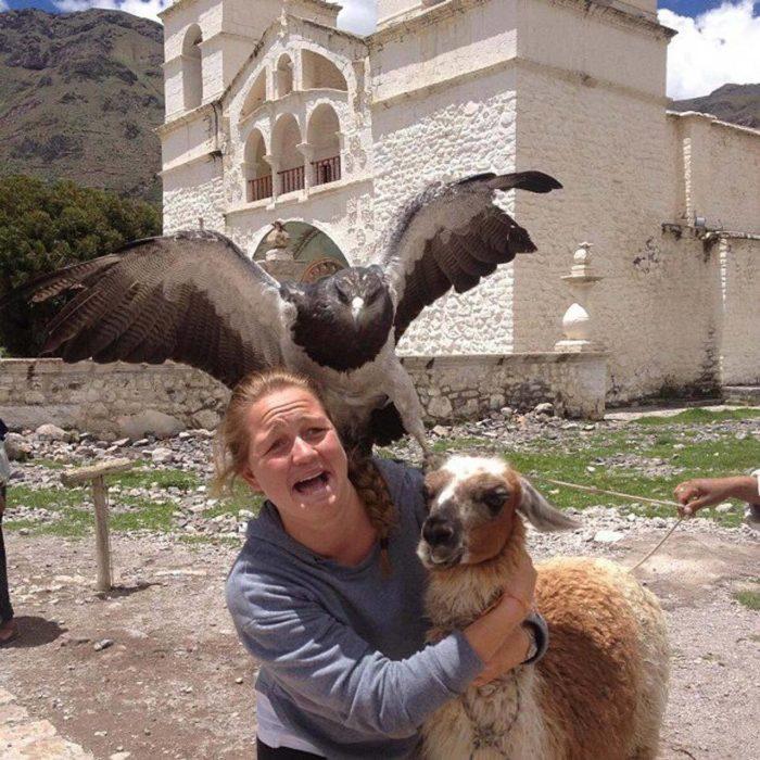 Foto de una mujer a la que ataca un ave