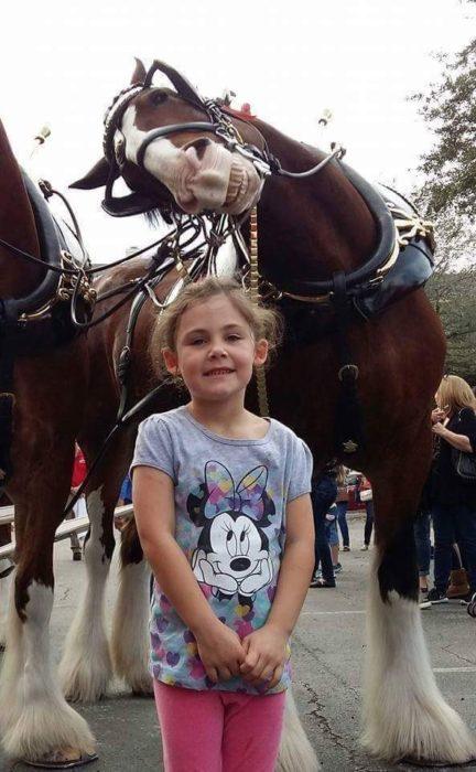 Foto de niña sonriendo y atras un caballo también sonrie