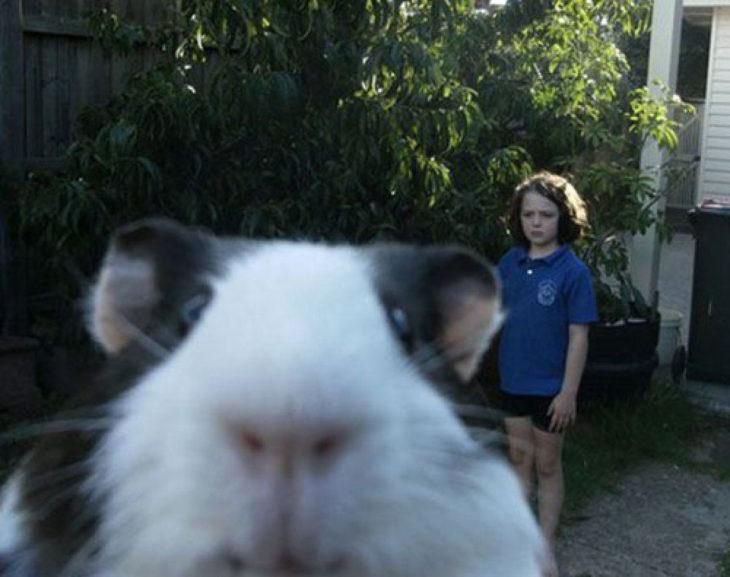 Animales photobomb - Foto de una niña atrás y en primer plano sale un hamster
