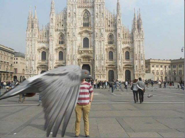 Animales photobomb - Hombre posando en la foto justo cuando una paloma pasa frente a él
