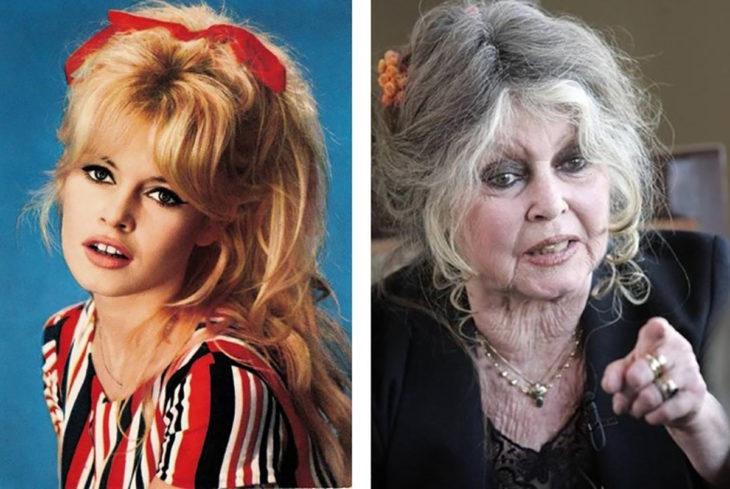 bardotte antes y después