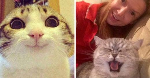 Cover-sonrisa-de-gato