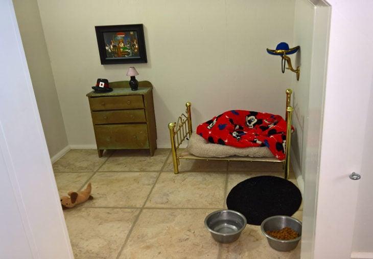 Cuarto para un perrito con cama, buró, lámpara, cuadro, comida