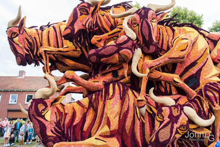 Gigantes esculturas florales - Búfalos