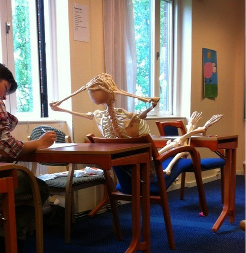 Esqueleto sentado como si fuera estudiante