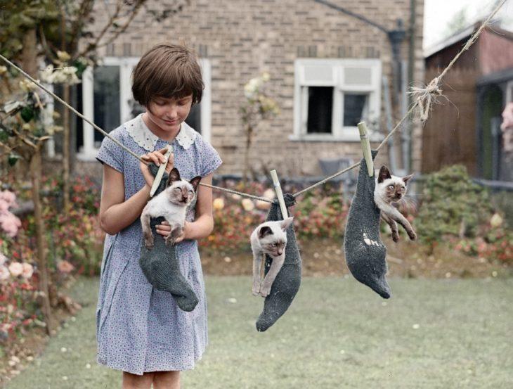 Fotos impresionantes y hermosas. Una niña colgando gatos en calcetines