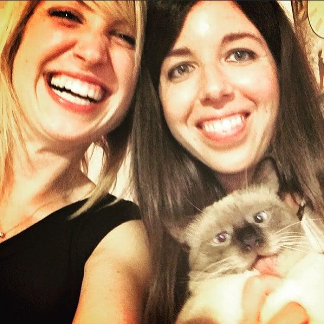 gato en la selfie