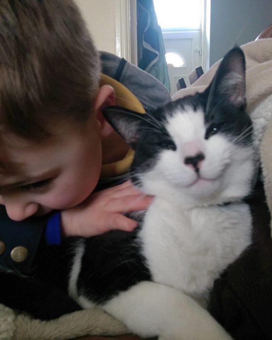 Gatito feliz a un lado de su amo niño feliz de que le abrace