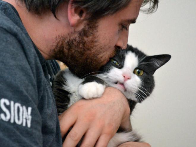 gato haciendo cara de fuchi justo cuando lo besa su dueño