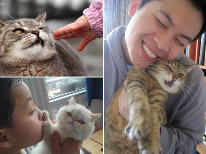 gato al´jeandose de la niña del primer cuadro