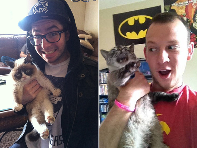 fotos con gatos mal tomadas