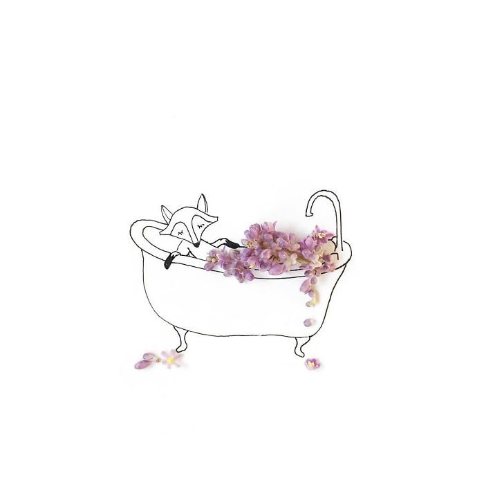 un zorro dándose un baño de flores arómaticas mientras descansa