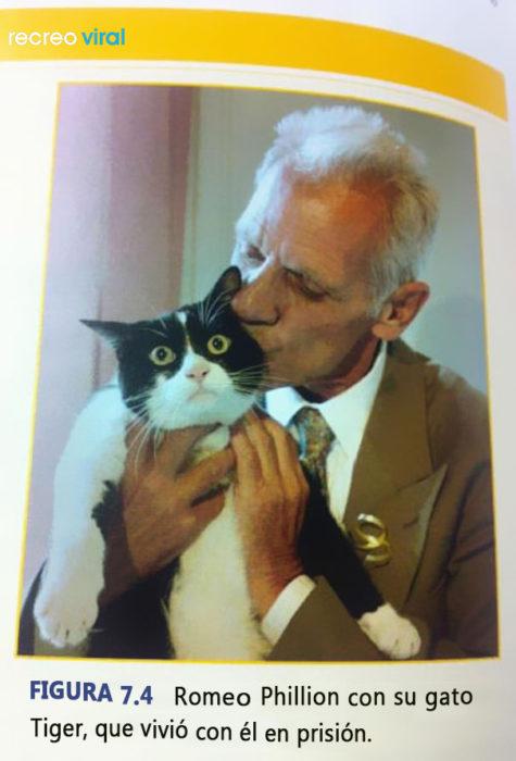 Cosas graciosas en libros de texto - hombre besa a su gato y el gato se ve asustado