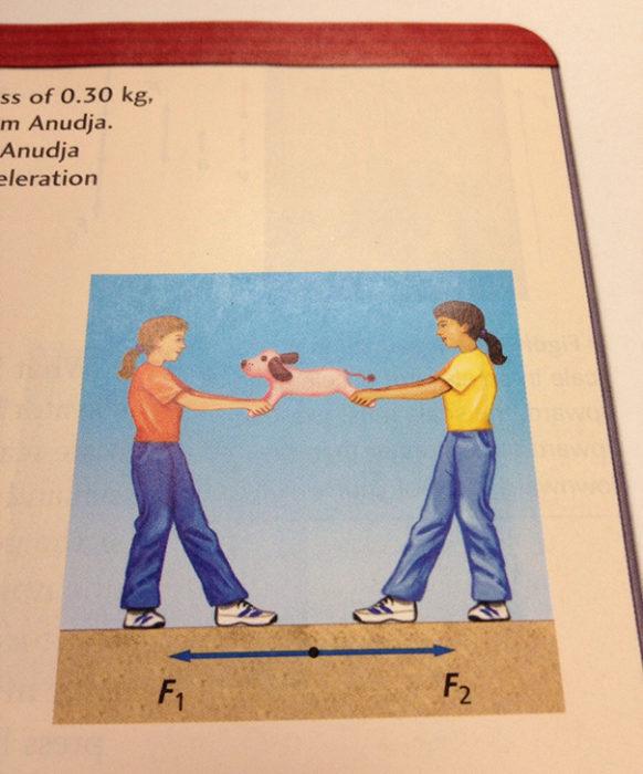 Cosas graciosas en libros de texto - dos personas halando a unperro