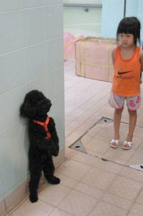 niña regañando a su perrito