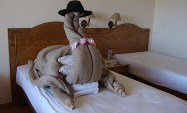 Peticiones absurdas hoteles - cobija con forma dde camello
