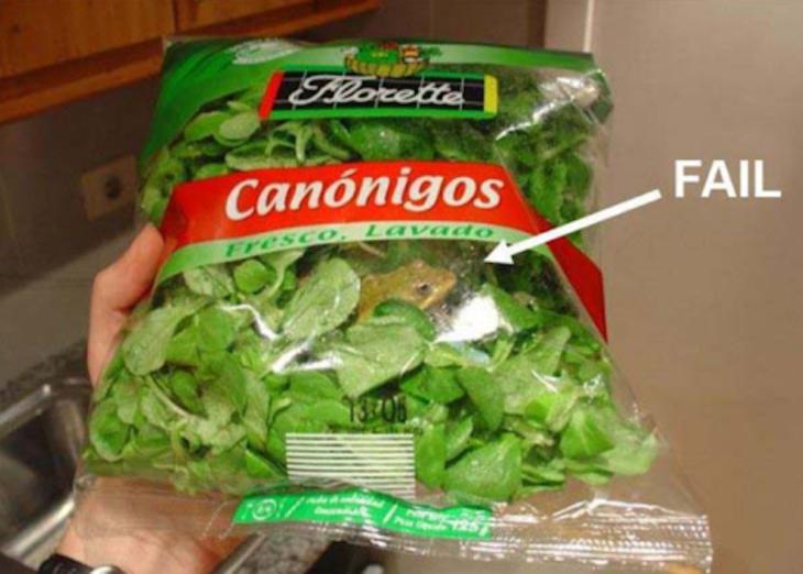 Una rana adentro de un paquete de verdura